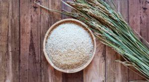 お米と稲の画像