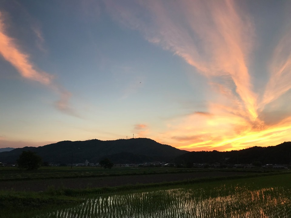 鳥取の夕焼けと田んぼ