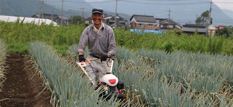 鳥取田中農場の白ネギ栽培のこだわり