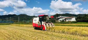 田中農場・晴天の中10月の稲刈り