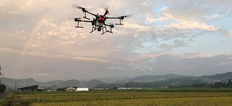 田中農場のミネラル散布はドローンを使用するので業務負荷が少なくてすむのです。この日のドローン散布時にちょうど虹がでていました