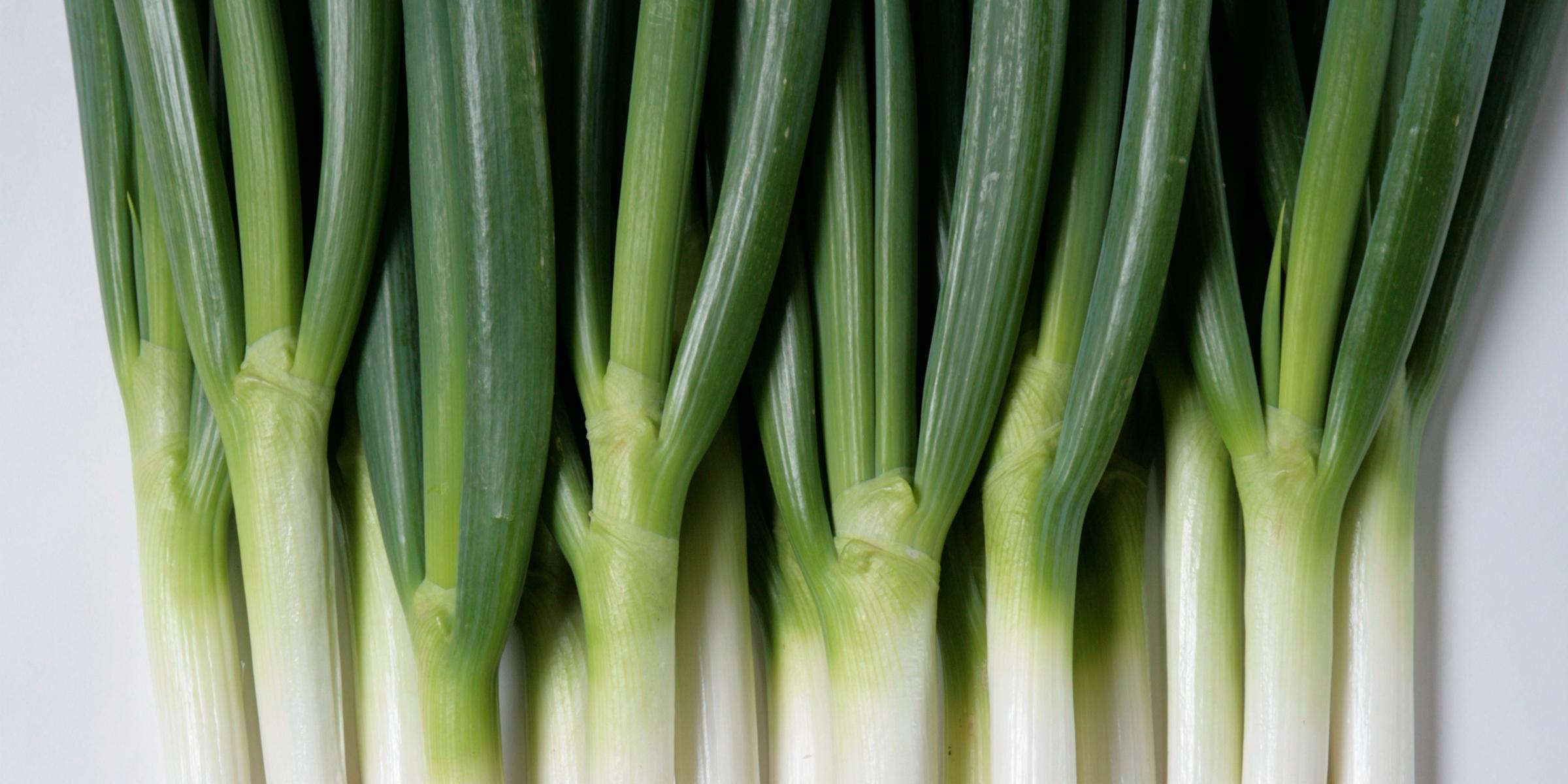 白ねぎ(長ネギ)の緑の部分も捨てないで!緑の部分の栄養価やおすすめの食べ方ご紹介♪