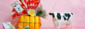 今年も1年ありがとうございました 田中農場こだわりの食材を食べてよい一年をお過ごしください