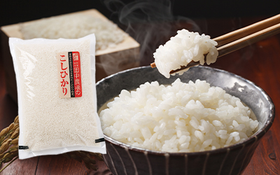 2020令和2年産特別栽培米こしひかり白米5kg