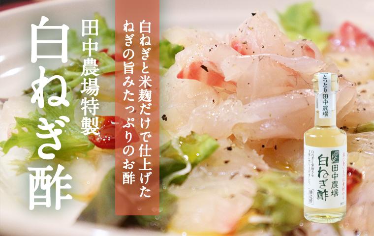 鳥取・田中農場の特別栽培白ねぎを使ったネギの旨みたっぷりの白ねぎ酢