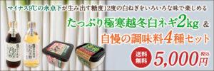 鳥取・田中農場自慢の甘くて柔らかな白ねぎをいろいろな味で楽しめるたっぷり極寒越冬白ネギ2キロ&田中農場自慢の調味料4種セット