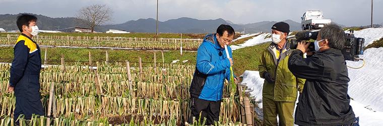 2021年1月15日BSS山陰放送 テレポート山陰に鳥取・田中農場の極寒越冬白ねぎを取材していただいている様子