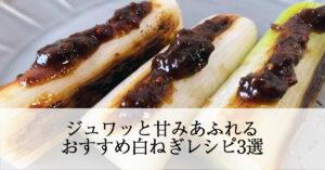 ジュワッと甘みあふれる!田中農場の白ねぎを使ったおすすめ白ねぎレシピ3選