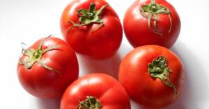 ツヤツヤと光る旨みたっぷりなトマト5個