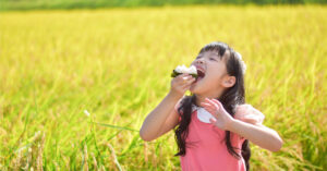 子供が稲穂の前でおにぎりを食べている様子